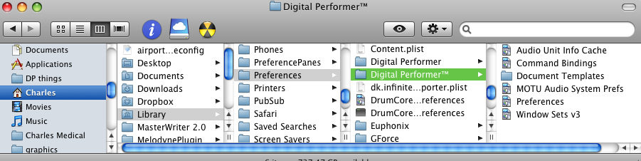 The filepath for DP Preferences